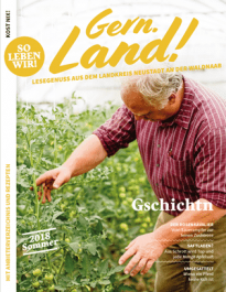 regionalmagazin-cover-so18